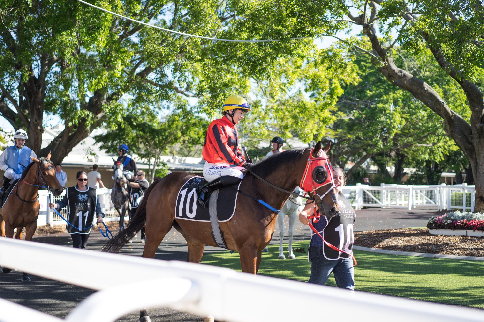 horse racing brisbane